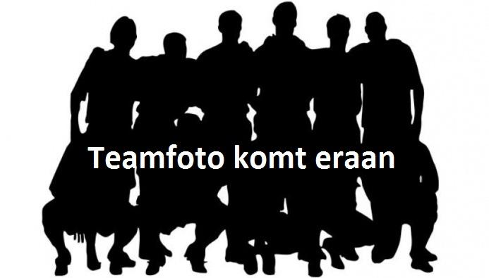 Afbeeldingsresultaat voor teamfoto