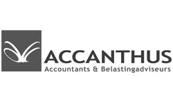 Accanthus klein